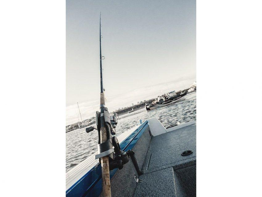 NorthSilver 570 Fish